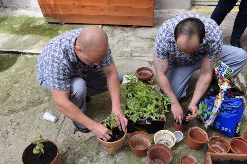Kertészkedő elítéltek