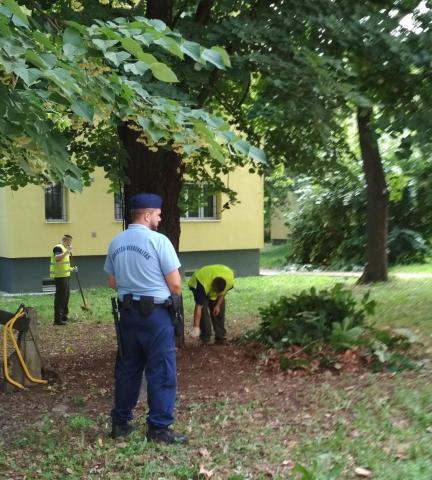 Őr jelenlétében takarítják a parkot a fogvatartottak